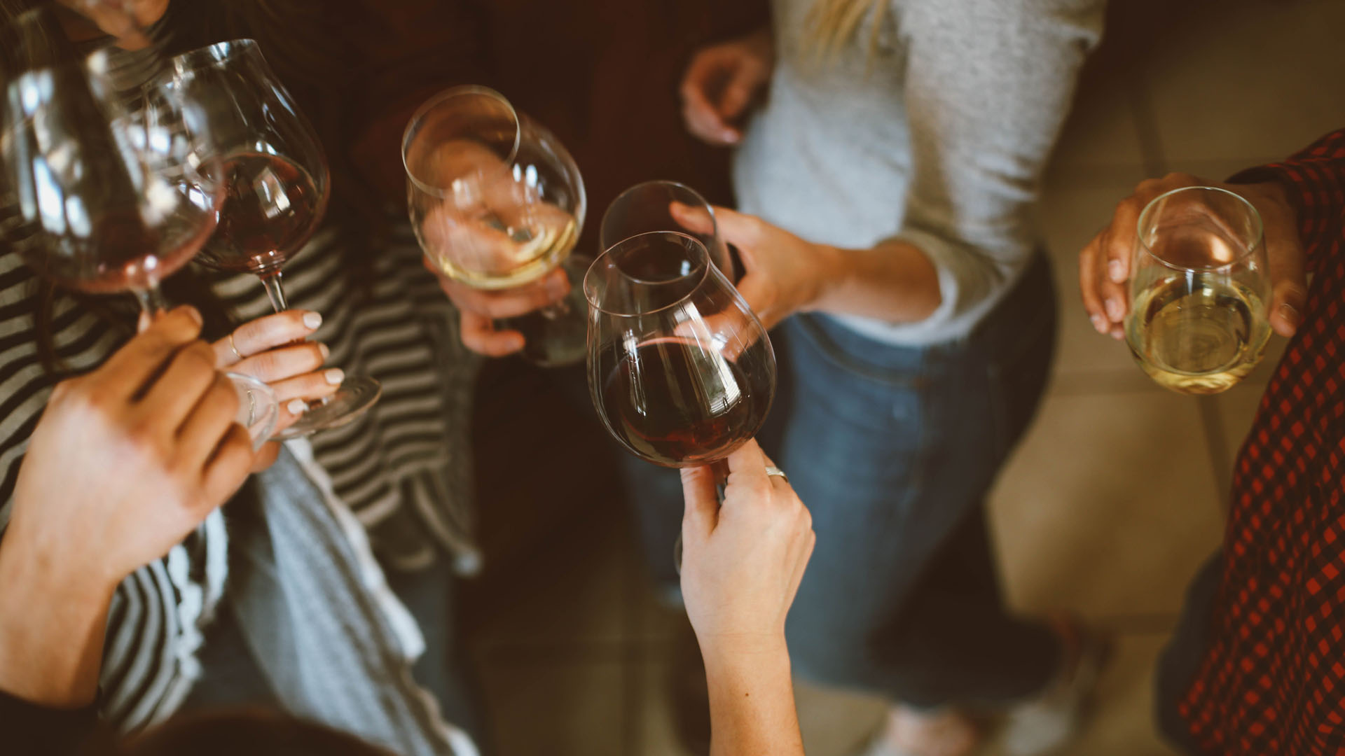 Photograph of six people holding wine glassing making a toast