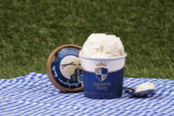 Photo of tub of Salcombe Dairy vanilla ice cream