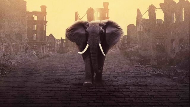 An elephant walking through a town in ruins, yellow-hued background.